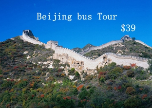 Mutianyu Great Wall  Bus Tour ​